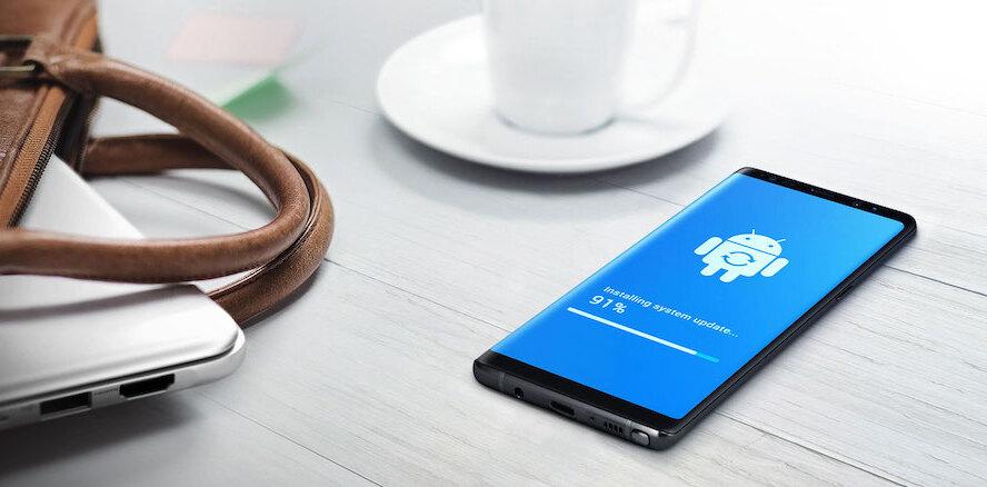 E-FOTA on user's Samsung phone